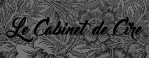 logo-cabinetdecire