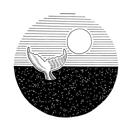 Whale-tail-sun
