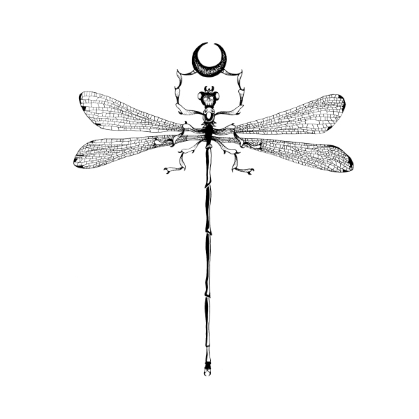 dragonfly-lunar